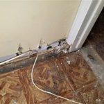 Tile Mold Damage